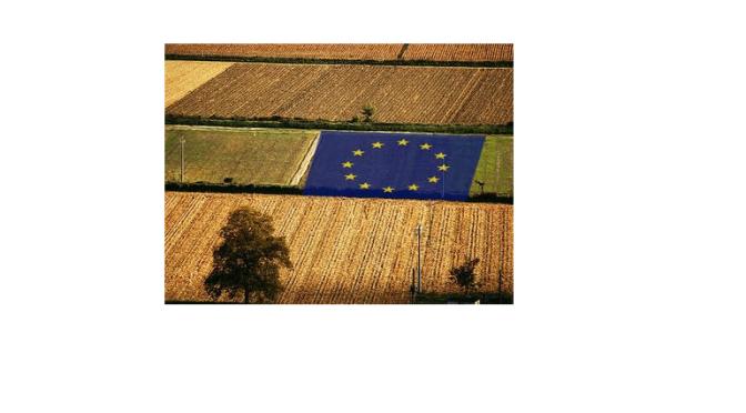 PROMOZIONE PRODOTTI AGRICOLI – CONTRIBUTI UE