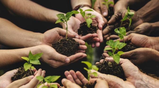 Pubblicato bando PSR 16.9.1 – Progetti di agricoltura sociale