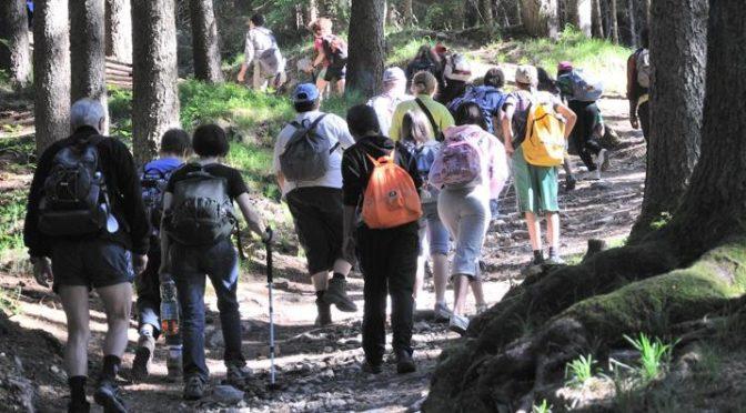 Contributi per riqualificare e valorizzare i sistemi boschivi a fini turistici, ricreativi e culturali – Regione Piemonte