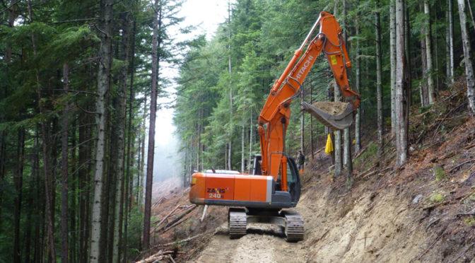 BANDO PSR 2014-2020 OP. 4.3.4 – Infrastrutture per accesso e gestione risorse forestali e pastorali
